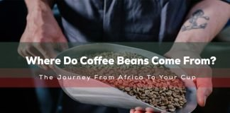Where Do Coffee Beans Come From